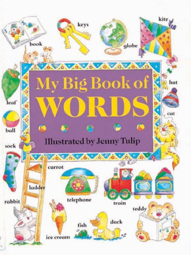My Big Book of Words By Isobel Clark