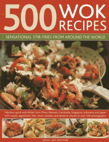 500 Wok Recipes By Jenni Fleetwood