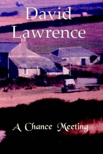 A Chance Meeting: A Novel by David Lawrence