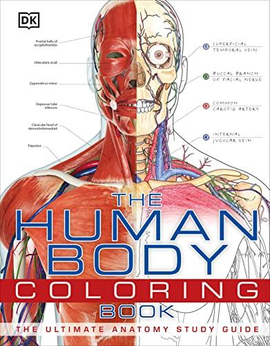 Human Body Coloring Book von DK