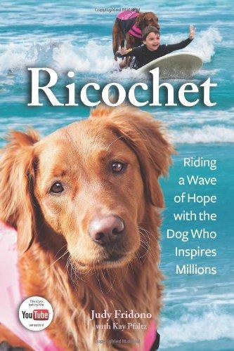 Ricochet By Judy Fridono