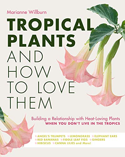 Tropical Plants and How to Love Them By Marianne Willburn