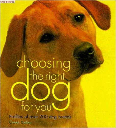 Choosing the Right Dog for You By gwen-bailey