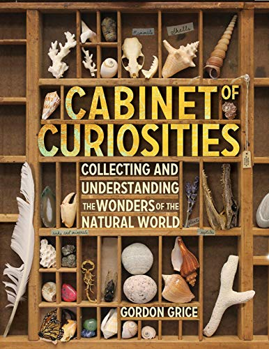 Cabinet-of-Curiosities-A-Kids-Guide-to-Collecting-and-Under-by-Grice-Gordon