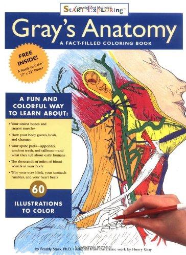 """Start Exploring """"Gray's Anatomy"""" By Freddy Stark"""