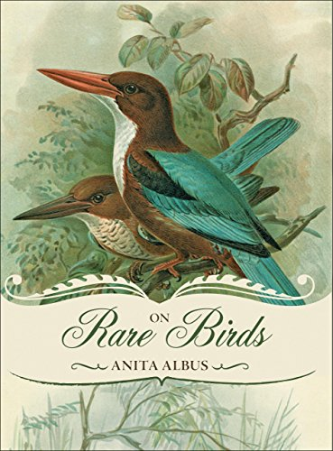 On Rare Birds by Anita Albus