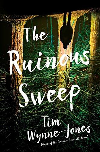 The Ruinous Sweep By Wynne-Jones Tim
