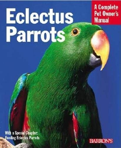 Eclectus Parrots By Katy McElroy