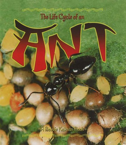 The Life Cycle of the Ant By Hadley Dyer