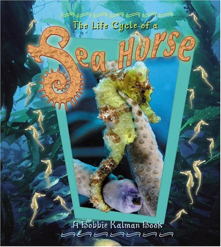 The Life Cycle of the Sea Horse By Bobbie Kalman