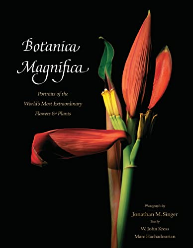 Botanica Magnifica: Portraits of the World?s Most Extraordinary Flowers and Plants (Tiny Folio) By (photographer) Jonathan Singer