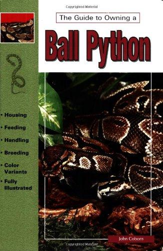 Ball Pythons By John Coborn