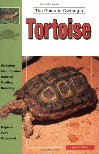 Tortoises By Jerry G. Walls