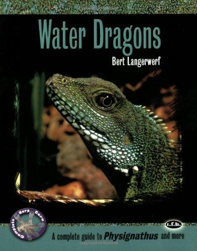 Water Dragons By Bert Langerwerf