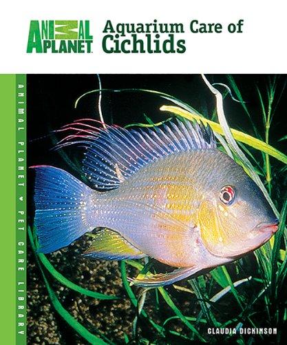 Aquarium Care of Cichlids By Claudia Dickinson
