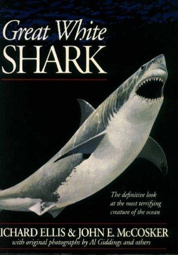 Great White Shark By Richard Ellis