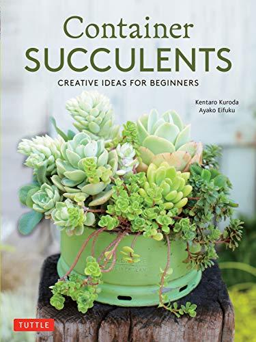 Container Succulents By Kentaro Kuroda