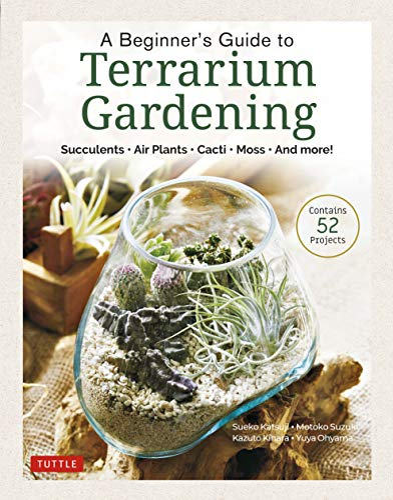 A Beginner's Guide to Terrarium Gardening By Boutiquesha