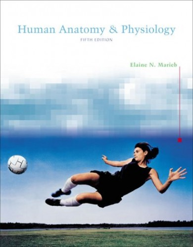 Human Anatomy And Physiology 5th Edition By Elaine N. Marieb
