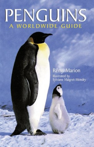 PENGUINS By Remy Marion
