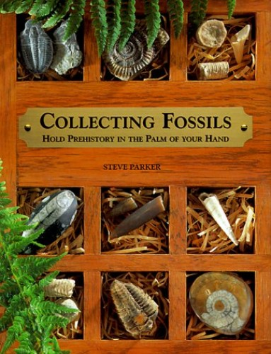Collecting Fossils By Murray Weston