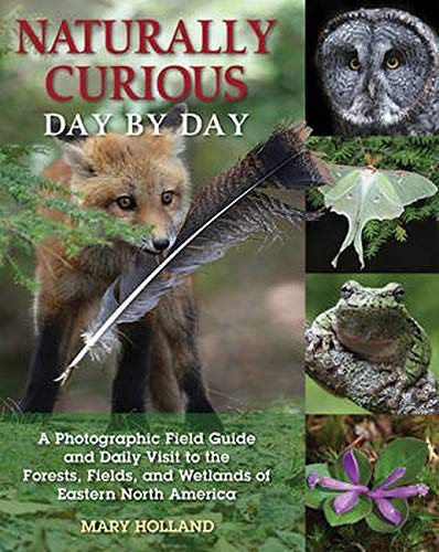 Naturally Curious Day by Day By Mary Holland