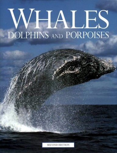 Whales, Dolphins, and Porpoises By Michael Bryden