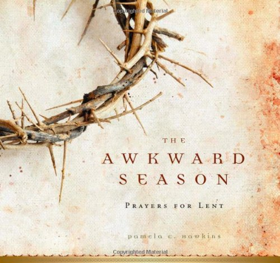 The Awkward Season By Pamela C Hawkins
