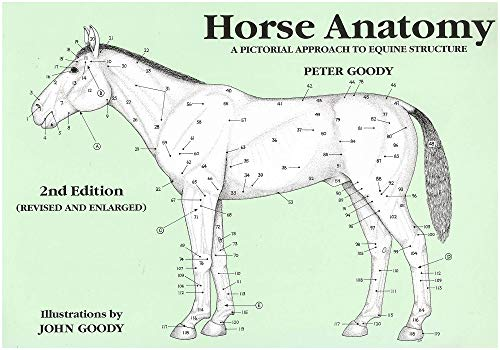 Horse Anatomy: A Pictorial Approach to Equine Structure By Peter C. Goody