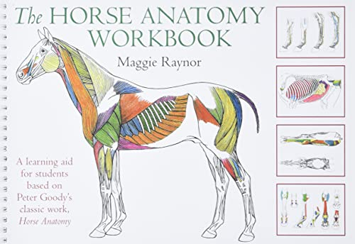 The Horse Anatomy Workbook: A Learning Aid for Students Based on Peter Goody's Classic Work, Horse Anatomy by Maggie Raynor