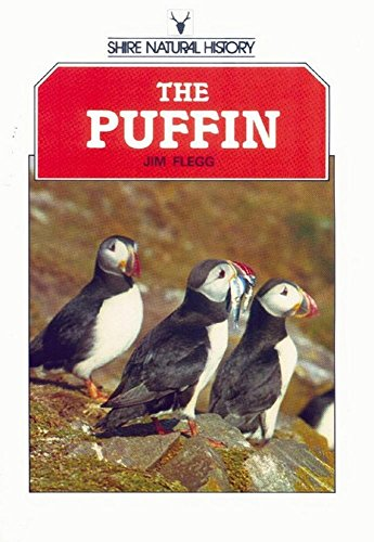 The Puffin By Jim Flegg