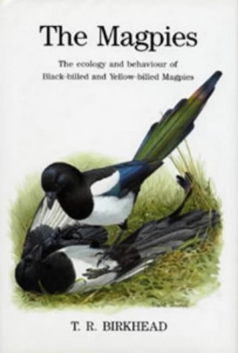 The Magpies: The Ecology and Behaviour of Black-billed and Yellow-billed Magpies by Tim R. Birkhead