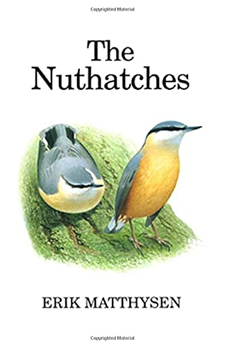 The Nuthatches By Erik Matthysen