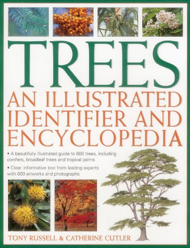 Trees: An Illustrated Identifier and Encyclopedia: A Beautifully Illustrated Guide to 600 Trees, Including Conifers, Broadleaf Trees and Tropical Palms by Tony Russell