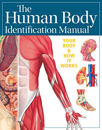 Human Body Identification Manual (Academic Edition) By Consultant editor Ian Whitmore, MD MB BS LRCP MRCS