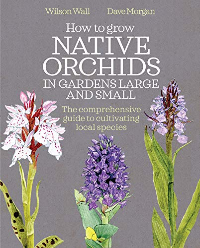 How to Grow Native Orchids in Gardens Large and Small By Wilson Wall