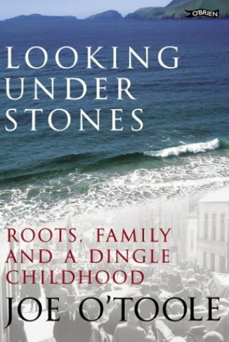 Looking Under Stones By Joe O'Toole