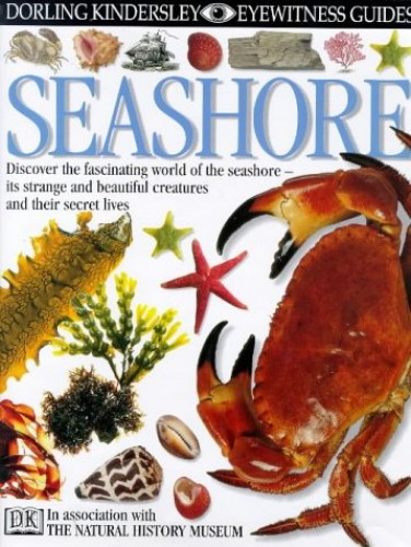 DK Eyewitness Guides:  Seashore By Steve Parker