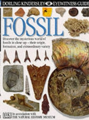 Fossil by Paul Taylor