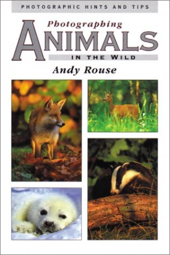 Photographing Animals in the Wild By Andy Rouse