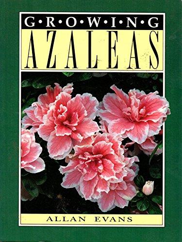Growing Azaleas By Alan Evans