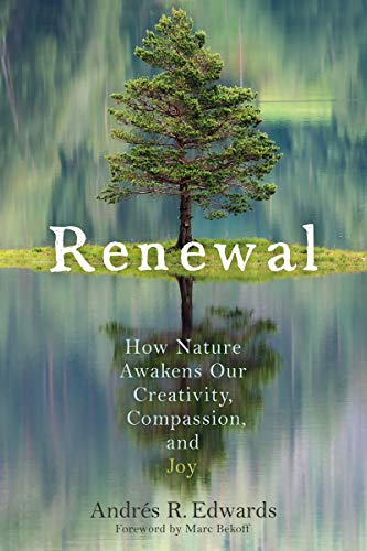 Renewal By Andres R. Edwards