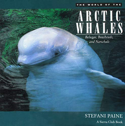 The World of the Arctic Whales By Stefani Paine