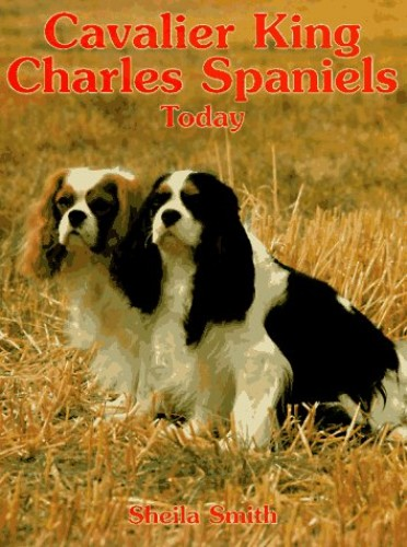 Cavalier King Charles Spaniels Today By Sheila Smith