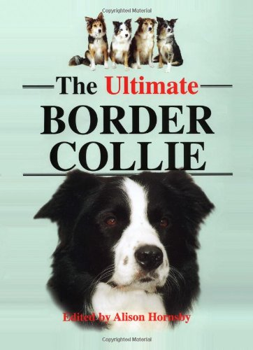 The Ultimate Border Collie By Alison Hornsby