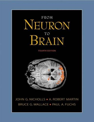 From Neuron to Brain By John G. Nicholls