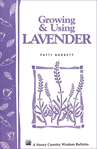 Growing and Using Lavender: Storey's Country Wisdom Bulletin  A.155 By Patti Barrett