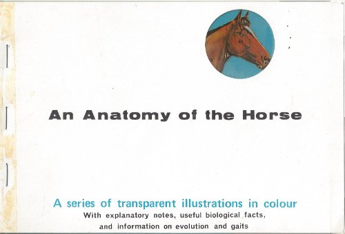 An Anatomy of the Horse by Richard Norman Smith