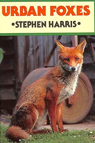 Urban Foxes By Stephen Harris