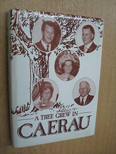 A Tree Grew in Caerau By Rachel Ann Webb